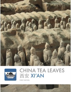 xi'an new cover